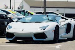 #lamborghini visiting the #Chevy dealership. #watsonville #chevrolet #customers #fancycars