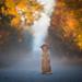 breathe autumn by Tom Landretti
