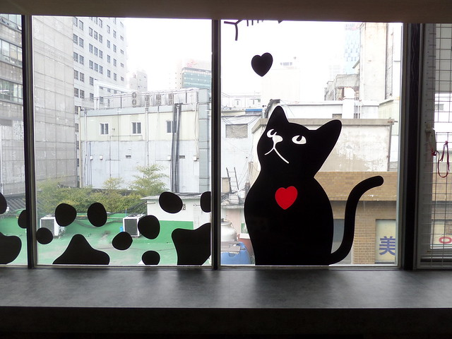 Godabang Cat Cafe Seoul