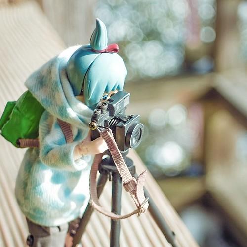 カメラロール-10446
