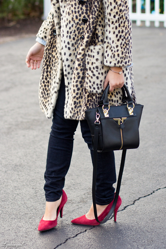 leopard coat, striped sweater, chambray-2.jpg