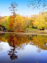 Lake Reflection, Autumn