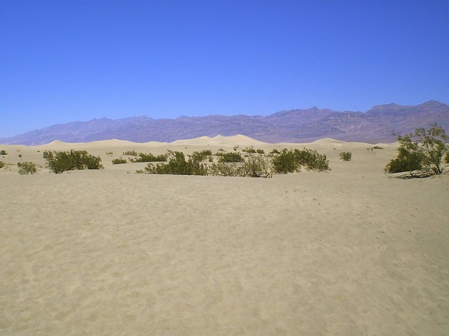 Flat Sand Dunes at Death Valley National Park