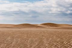 prairie(0.0), steppe(0.0), field(0.0), plateau(0.0), wadi(0.0), grassland(0.0), erg(1.0), soil(1.0), sand(1.0), plain(1.0), aeolian landform(1.0), natural environment(1.0), desert(1.0), dune(1.0), landscape(1.0), sahara(1.0),