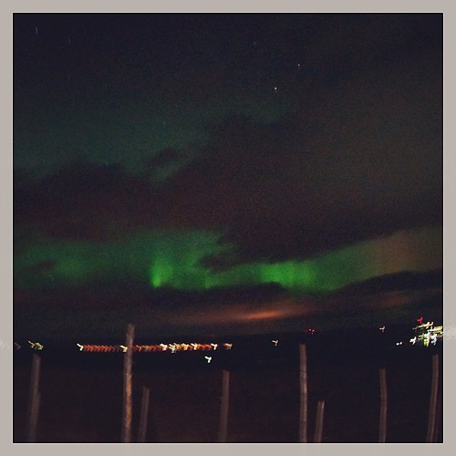 1st time in my life : Northern Lights in Sweden #magicalairbnb