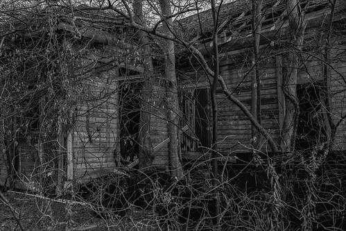 abandoned building derelict home house old overgrown ruin structure houston texas unitedstates decay oncewashome