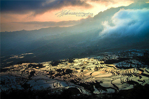 china travel light cloud mountain color colour reflection nature water field sunshine sunrise landscape nikon view rice natural terrace chinese 中国 yunnan scape chine yuanyang 云南 元阳 d600 coloris qiconglin