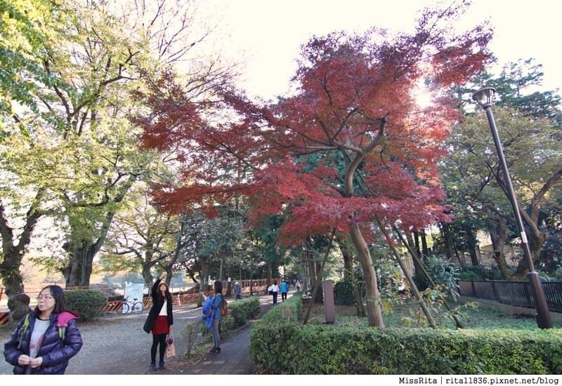 東京 好玩景點 三鶯之森吉力卜宮崎駿美術館 井之頭恩賜公園47