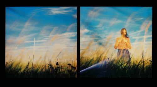Summer Eyes (diptych)