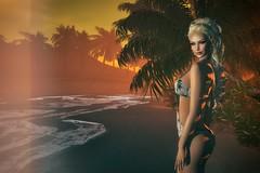 Portia - Summer Sun
