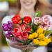 Caroline Plouff | of Cut Flowers by carolineplouff
