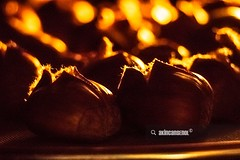 Chestnut in Oven