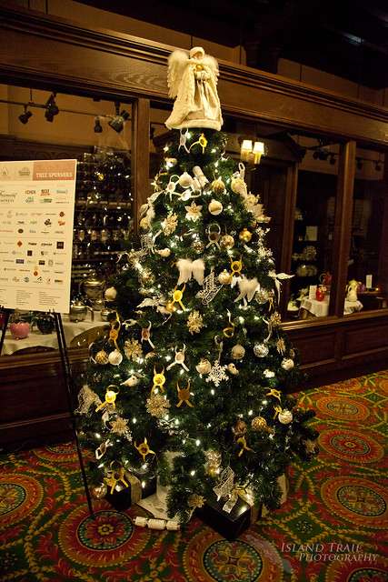 Festival of Trees - 2014.12.19-9495