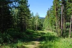 Kananaskis Country - West Bragg Creek Provincial Recreation Area