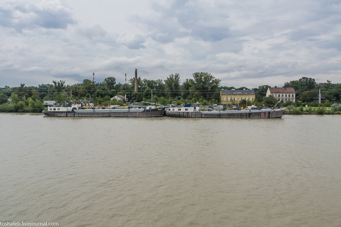 Венский Дунай-43