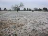 Frozen field, San Angelo