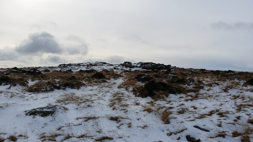 Buttern Hill #sh #dartmoor