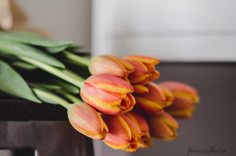 Ombre orange and yellow tulips
