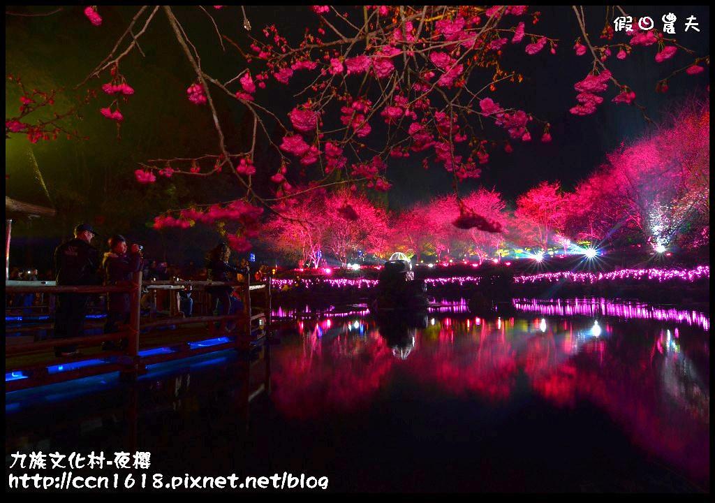 九族文化村-夜櫻DSC_4985