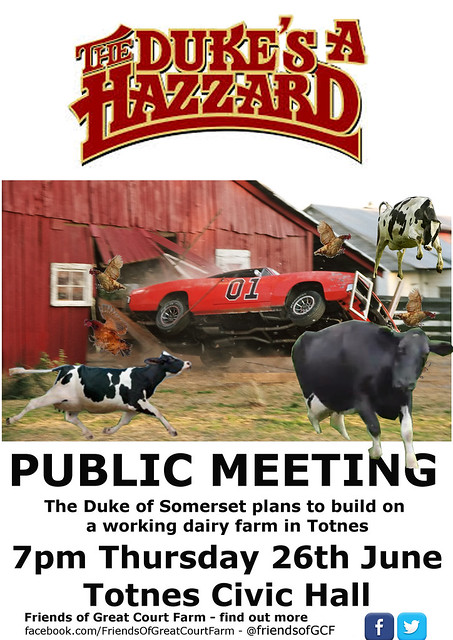 Dukes-A-Hazzard-Poster-working-1