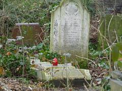 Abney Park cemetery 05