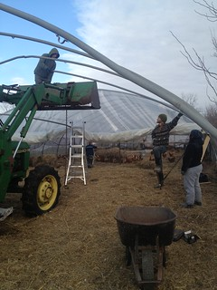 Greenhouse Frame Repair