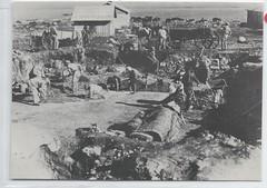 1174075  Beit Alpha Israel Jewish Mosaic