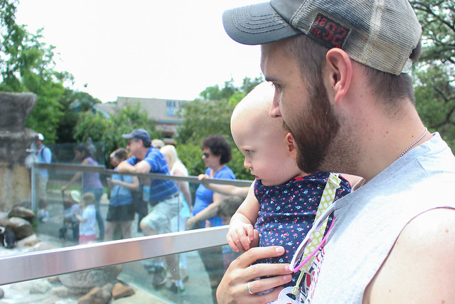 Turtle Back Zoo - Peyton's first zoo!