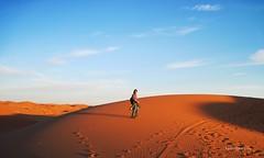 plain(0.0), wadi(0.0), grassland(0.0), erg(1.0), horizon(1.0), sand(1.0), aeolian landform(1.0), natural environment(1.0), plateau(1.0), desert(1.0), dune(1.0), landscape(1.0),