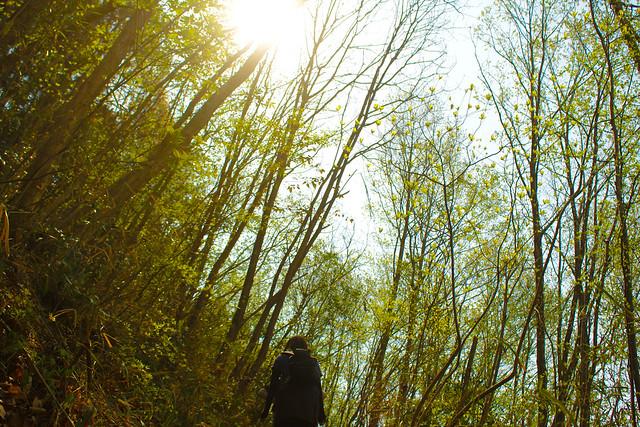 2014-04-19_00095_美の山.jpg
