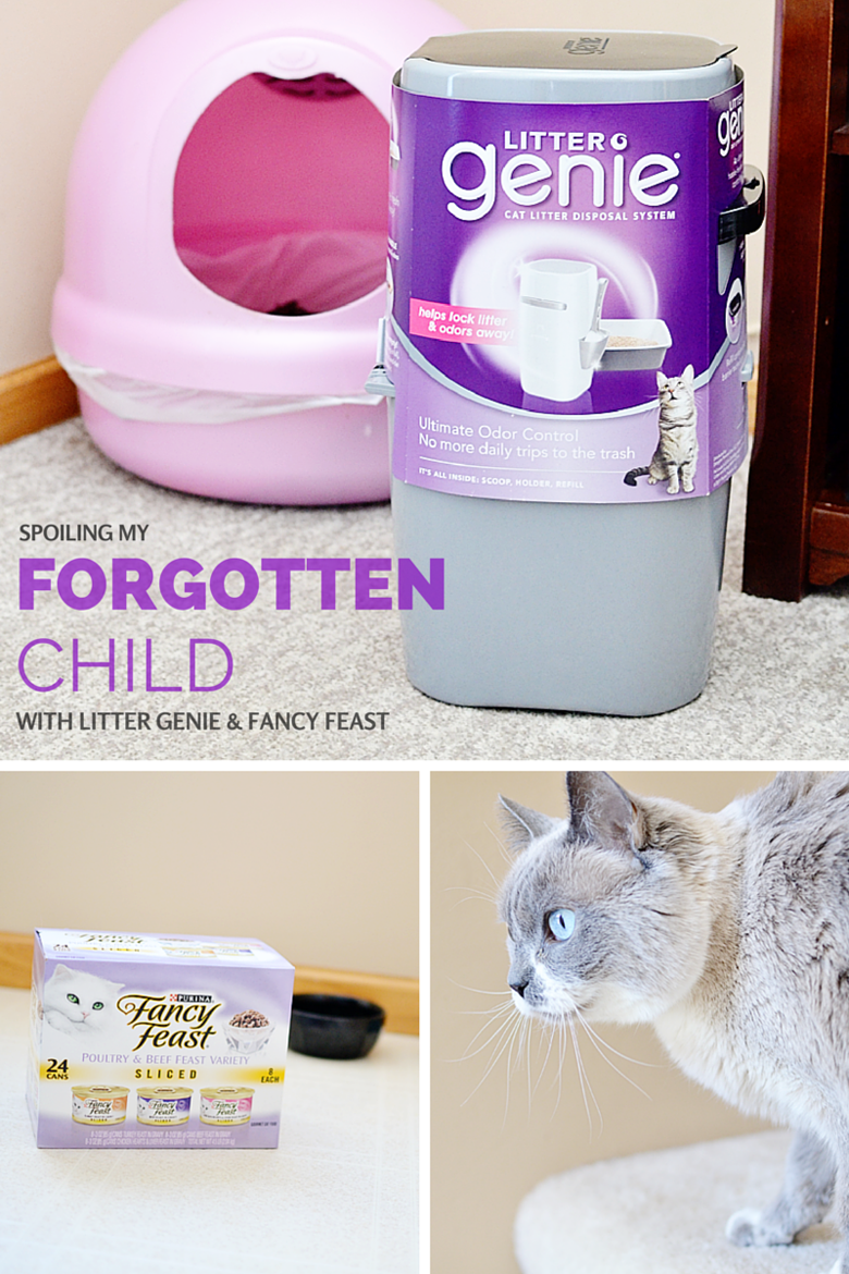 Spoiling my forgotten child with Litter Genie and Fancy Feast