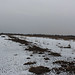 Small photo of Panorama Moor