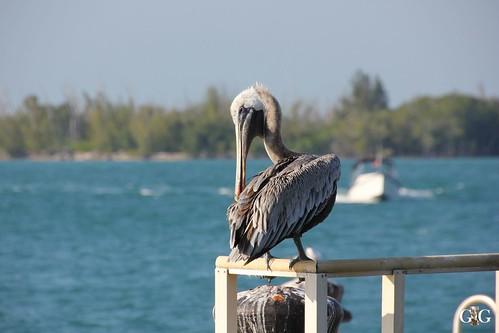 Miami vom 14.11.-16.11.2014 71