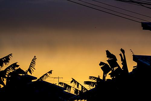 sunset brazil sky praia beach brasil golden céu pôrdosol