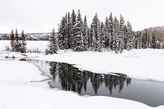Mesa Lakes Snowshoeing (1-4-15)