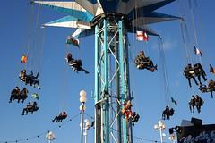 festival(0.0), light fixture(0.0), mast(0.0), street light(0.0), lighting(0.0), ferris wheel(0.0), pole(1.0), blue(1.0), amusement park(1.0),
