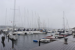 Aker Brygge under cold autumn rain