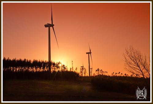 sunset canon7d generatoresmill