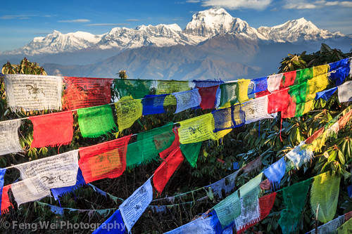 travel nepal mountain snow color beautiful horizontal sunrise landscape religious dawn colorful asia outdoor religion scenic peak buddhism tibetan np majestic annapurnacircuit annapurna prayerflag poonhill tibetanbuddhism bagmati westernregion annapurnaconservationarea ghodepani