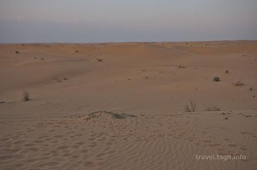 【写真】2014 世界一周 : ドバイ・砂漠(1日目)/2014-12-17/PICT6693
