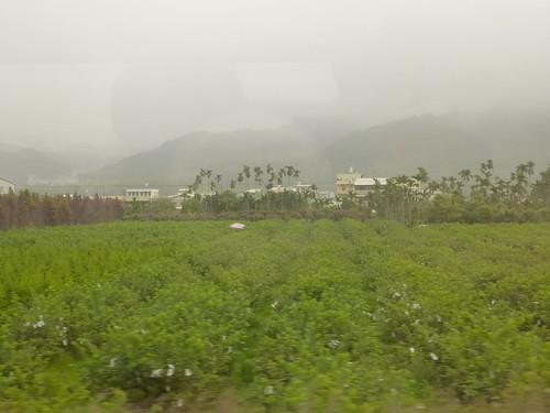 Ta-Chiayi-Taichung-bus (10)