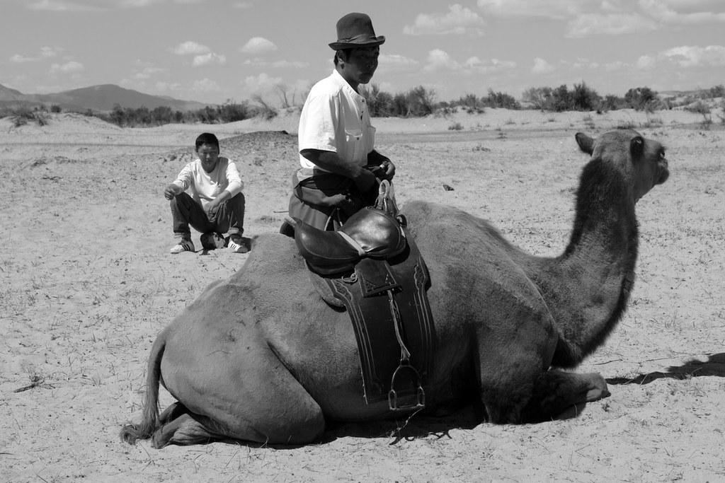 Nómadas a camello El infierno de cruzar el desierto de Gobi - 16724718231 c36629db10 b - El infierno de cruzar el desierto de Gobi