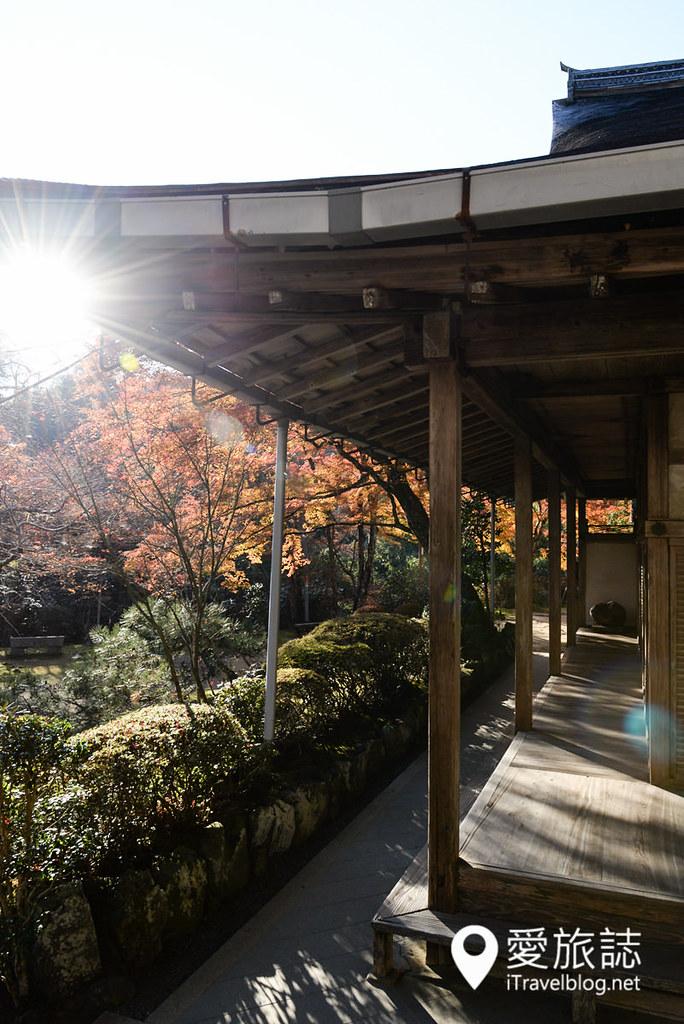 京都赏枫景点 高雄西明寺 10