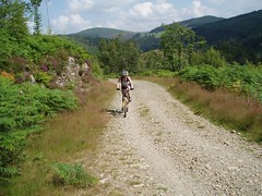 Helen mountain Biking at Coed-Y-Brenin Image
