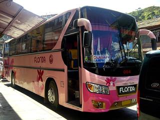 GV Florida Transport 004