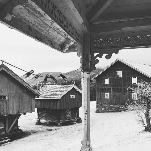 Winter season at the farm