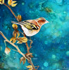 Bird (chaffinch) by Magnetic - Oiseau (pinson des arbres) par Magnetic by Painting-Drawing-Artworks-Street Art-by Magnetic