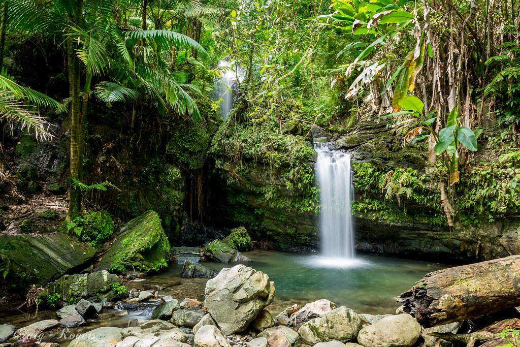 Bano de oro trail puerto rico tripcarta for Bano de oro el yunque