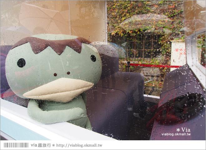 【阿朗基愛旅行】台北華山藝文特區阿朗基展~跟著阿朗基一起環遊世界去!4