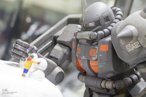 GBWC2014_World_representative_exhibitions-183